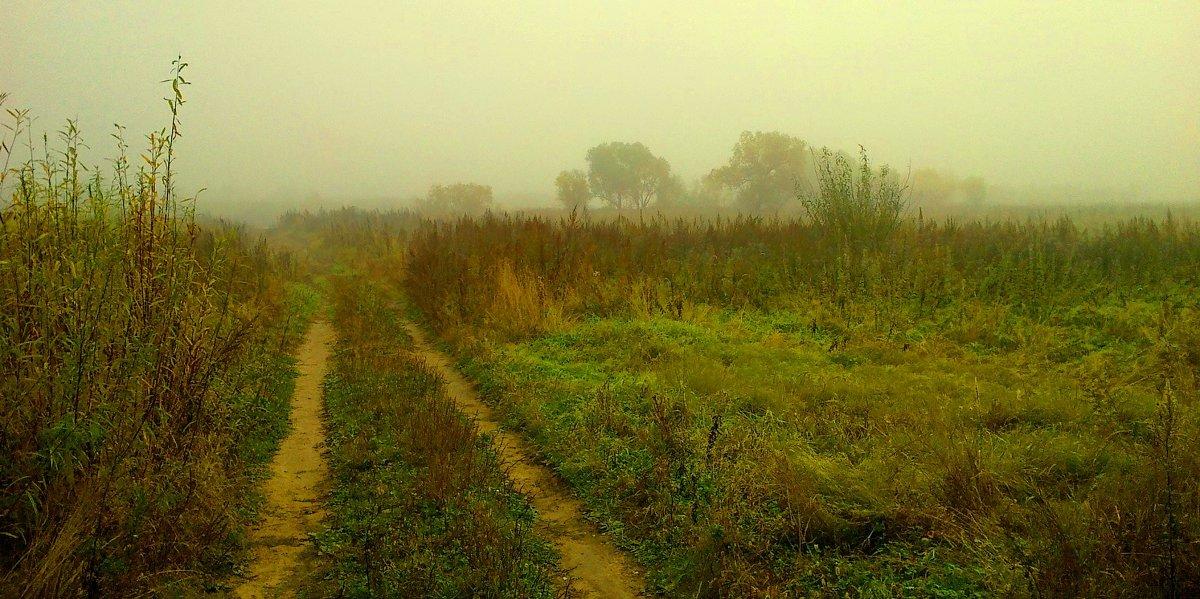 Туманная дорога :) - Милла Корн