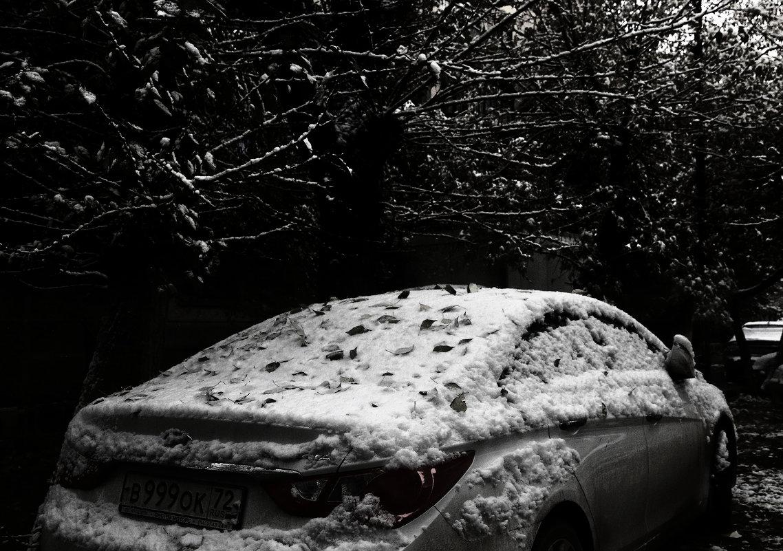 Первый снег - Сергей Елесин