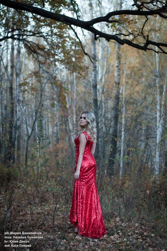 Девушка в красном - Мария Данилейчук