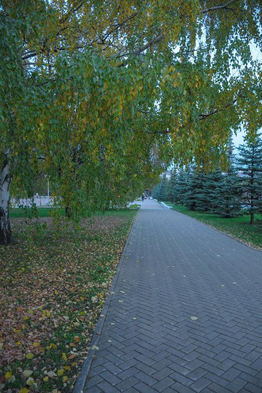 Дорожка в парке - Сергей Тагиров