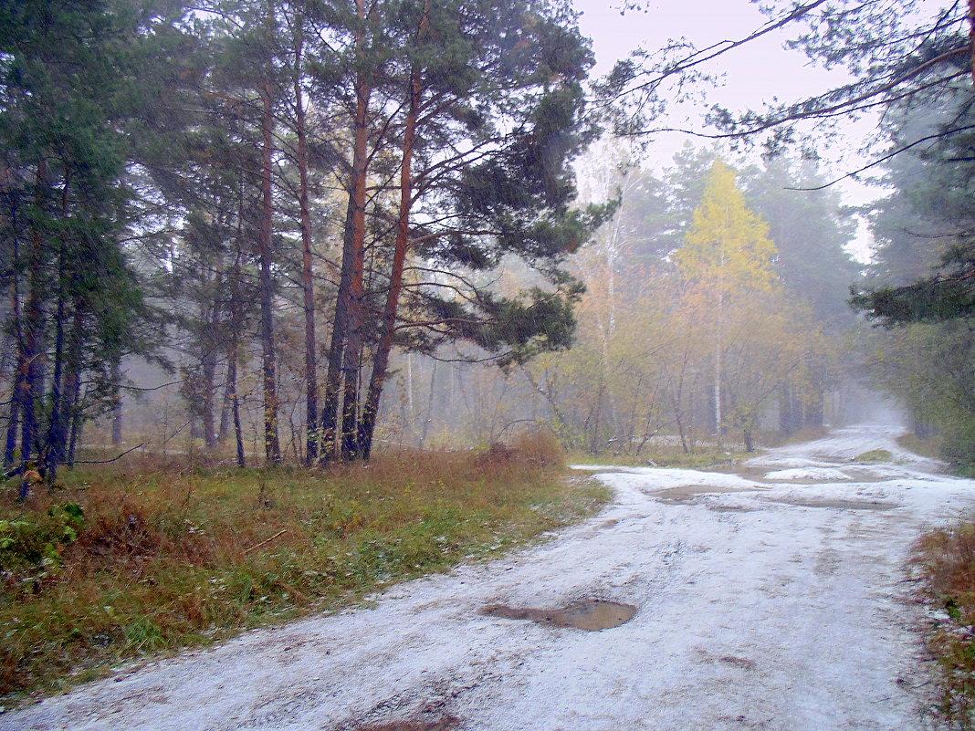 На Покров идёт снег. - Мила Бовкун