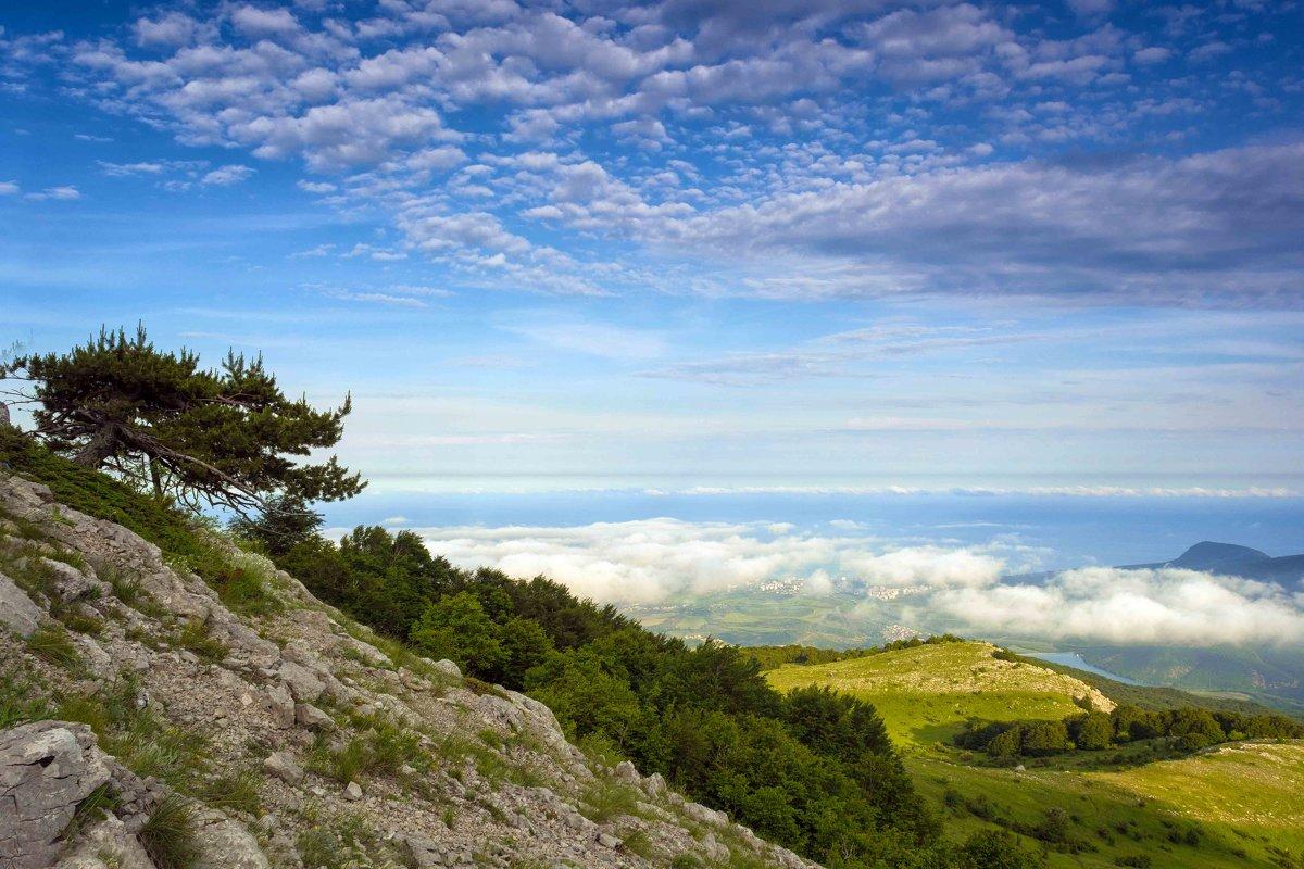 Выше облаков - Ольга