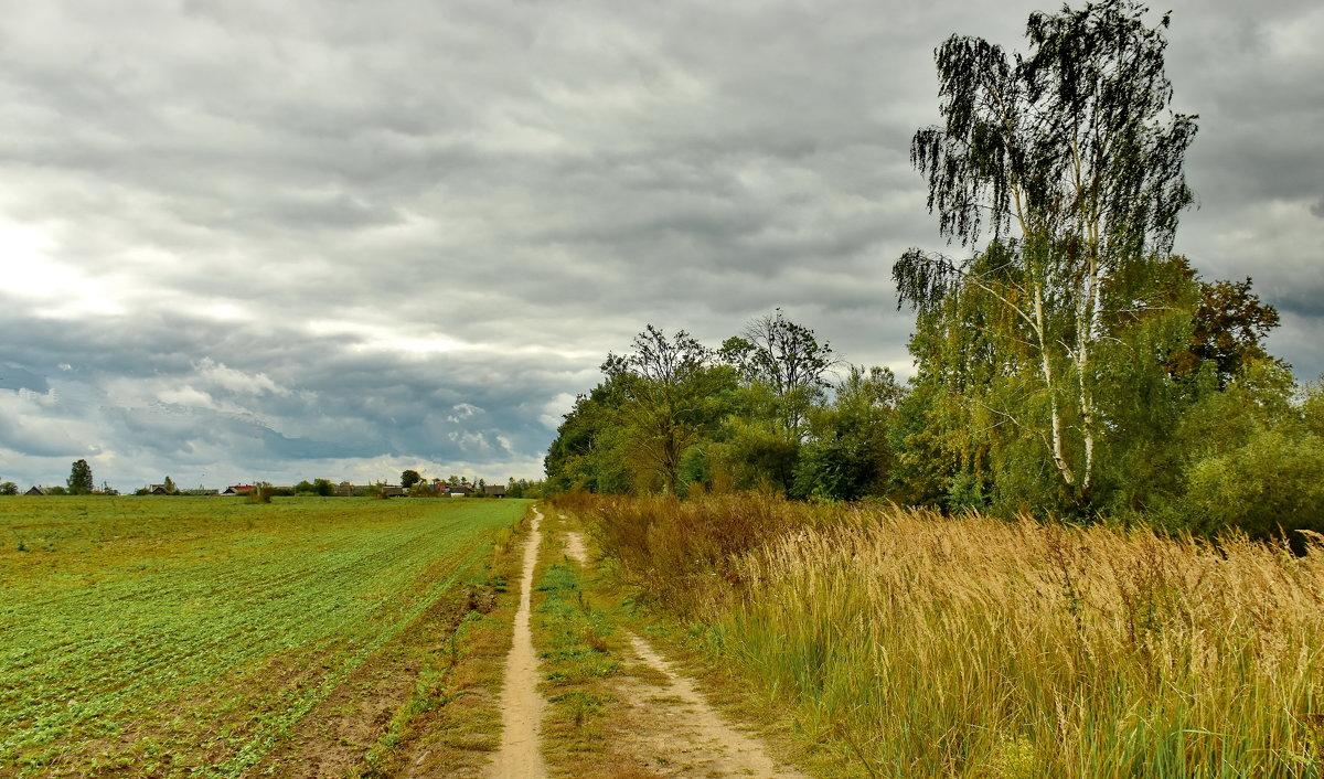 В  деревню. - Валера39 Василевский.