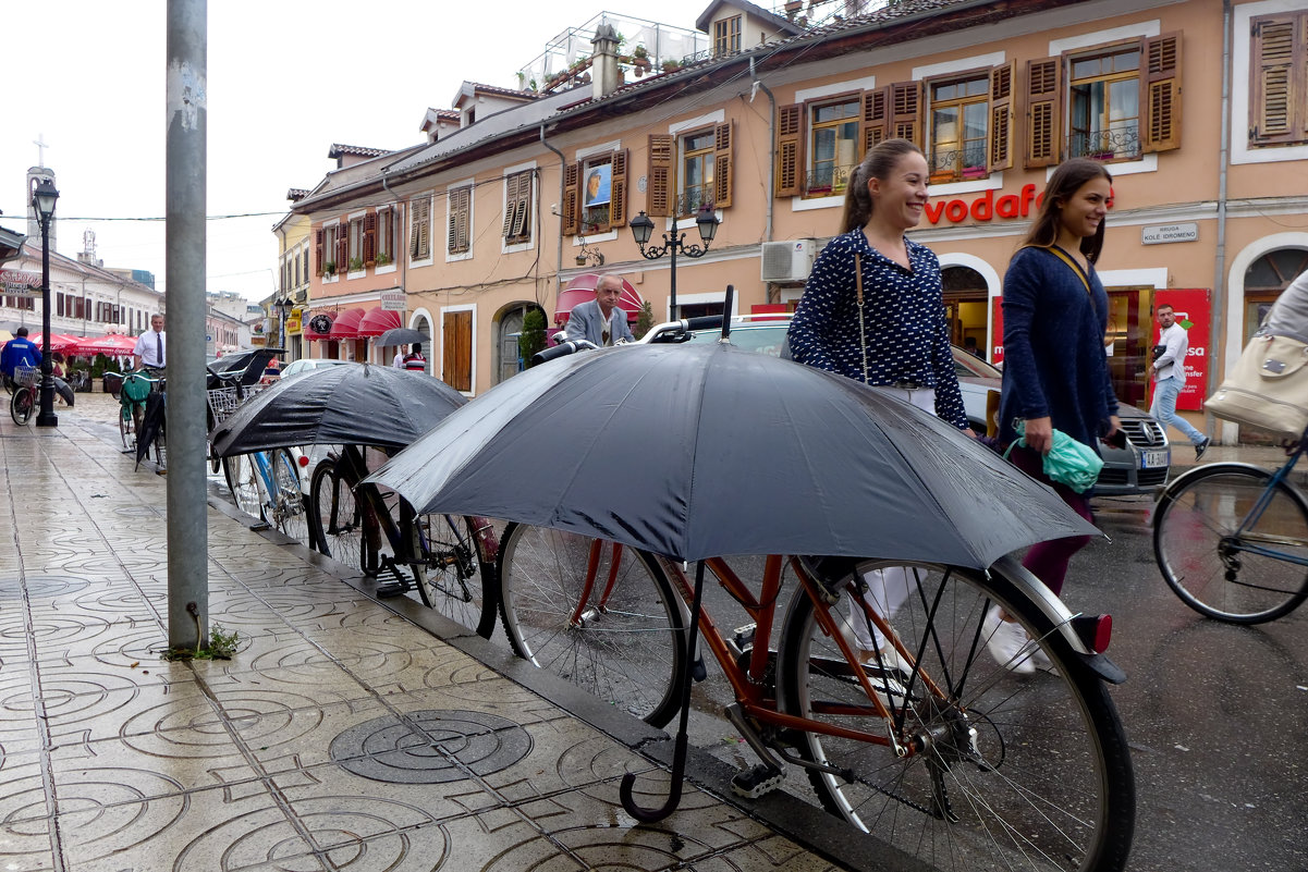 Велосипеды - в любую погоду!! - Светлана Игнатьева