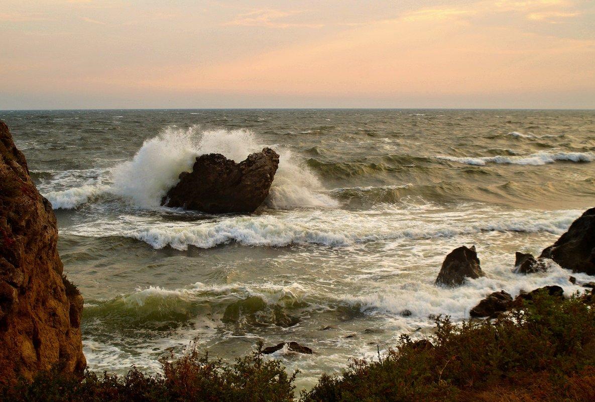 Море Азовское. - владимир