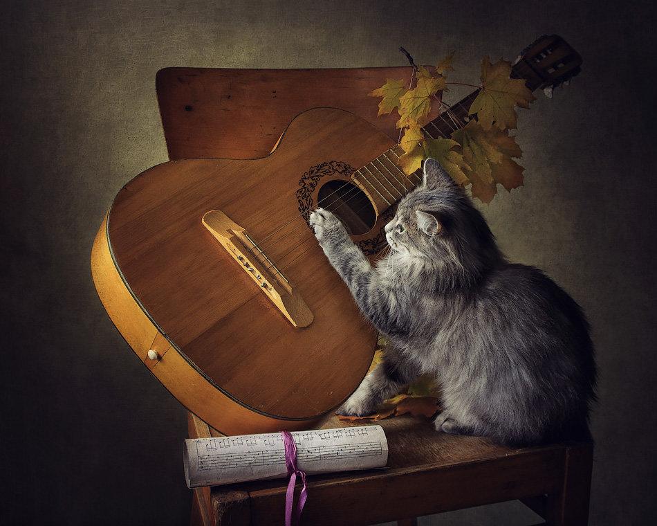 Гитаристка - Ирина Приходько