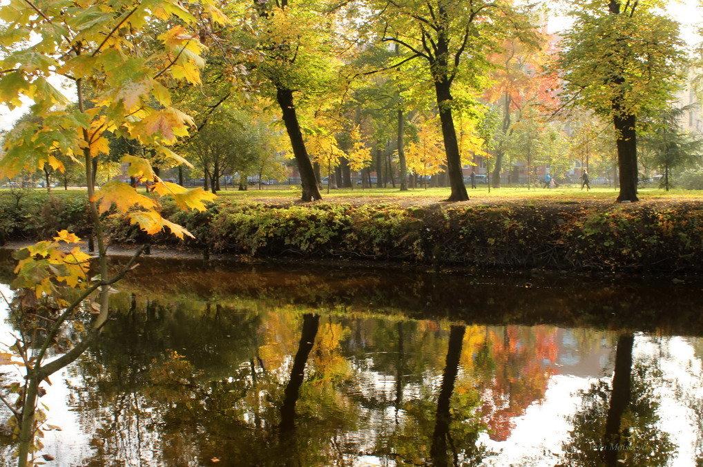 Осеннее лирическое - Вера Моисеева