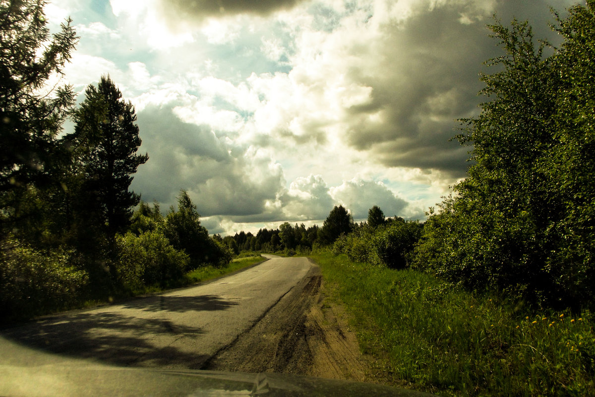 вдоль по дороге - Сергей Кочнев