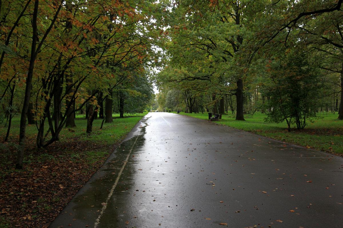 Осенние прогулки 2 - Евгений Персианов