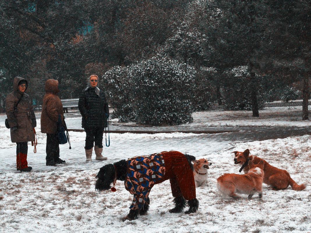 Не выбрал - Сергей Яценко