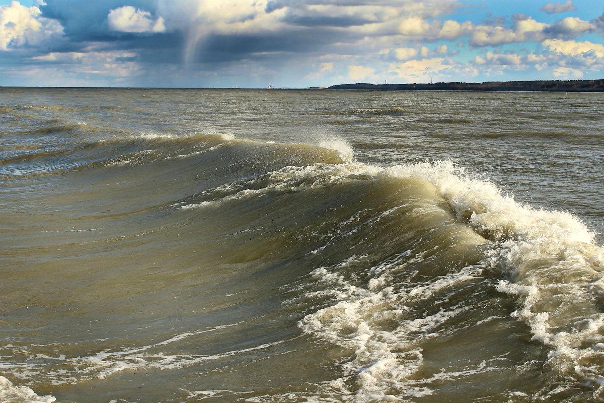 Финский залив - Marina Pavlova