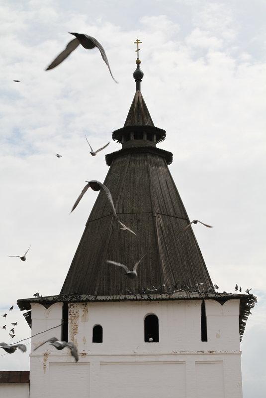 Свято Пафнутьев Боровский монастырь - Игорь Смолин