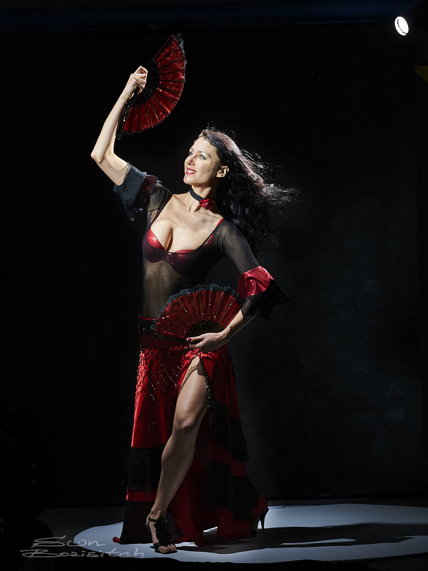 Танец с веерами - Александр Амеличкин