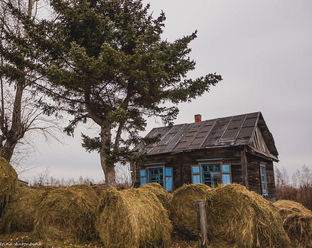 Домик в деревне, сеном запаслись! - Ирина Антоновна
