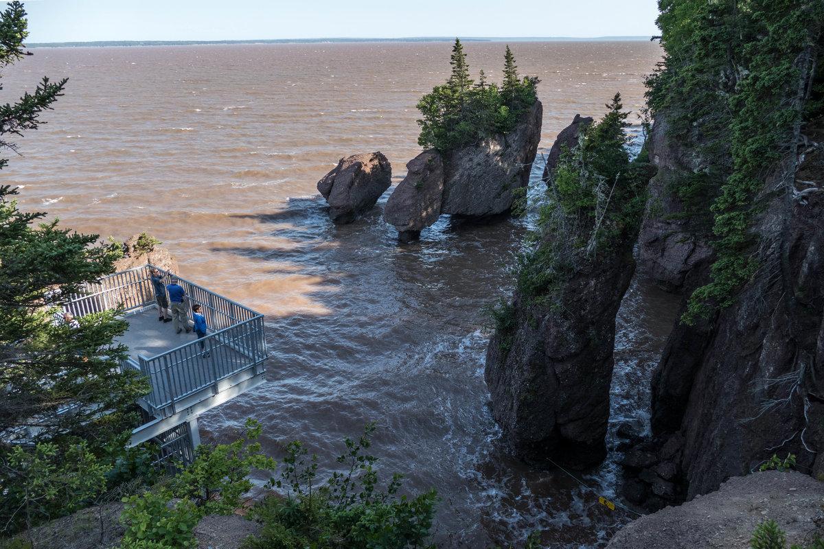 А ведь мы бродили здесь посуху по морскому дну, см. снимки (Hopewell Cape Rocks, Canada) - Юрий Поляков