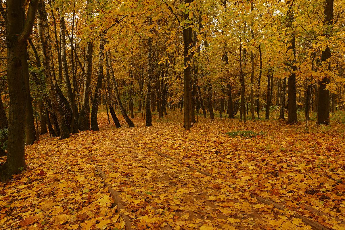 Осенняя - Alex