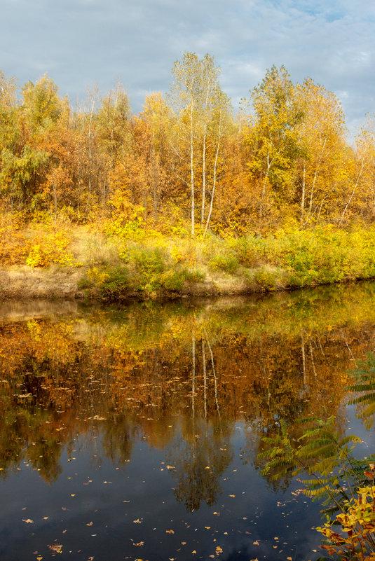 отражение - Надежда Щупленкова