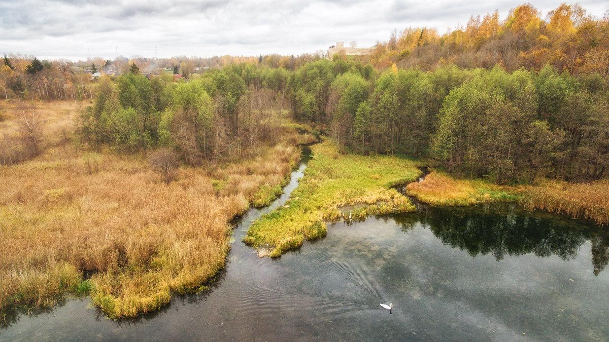 Лебединое озеро - Дмитрий Погодин