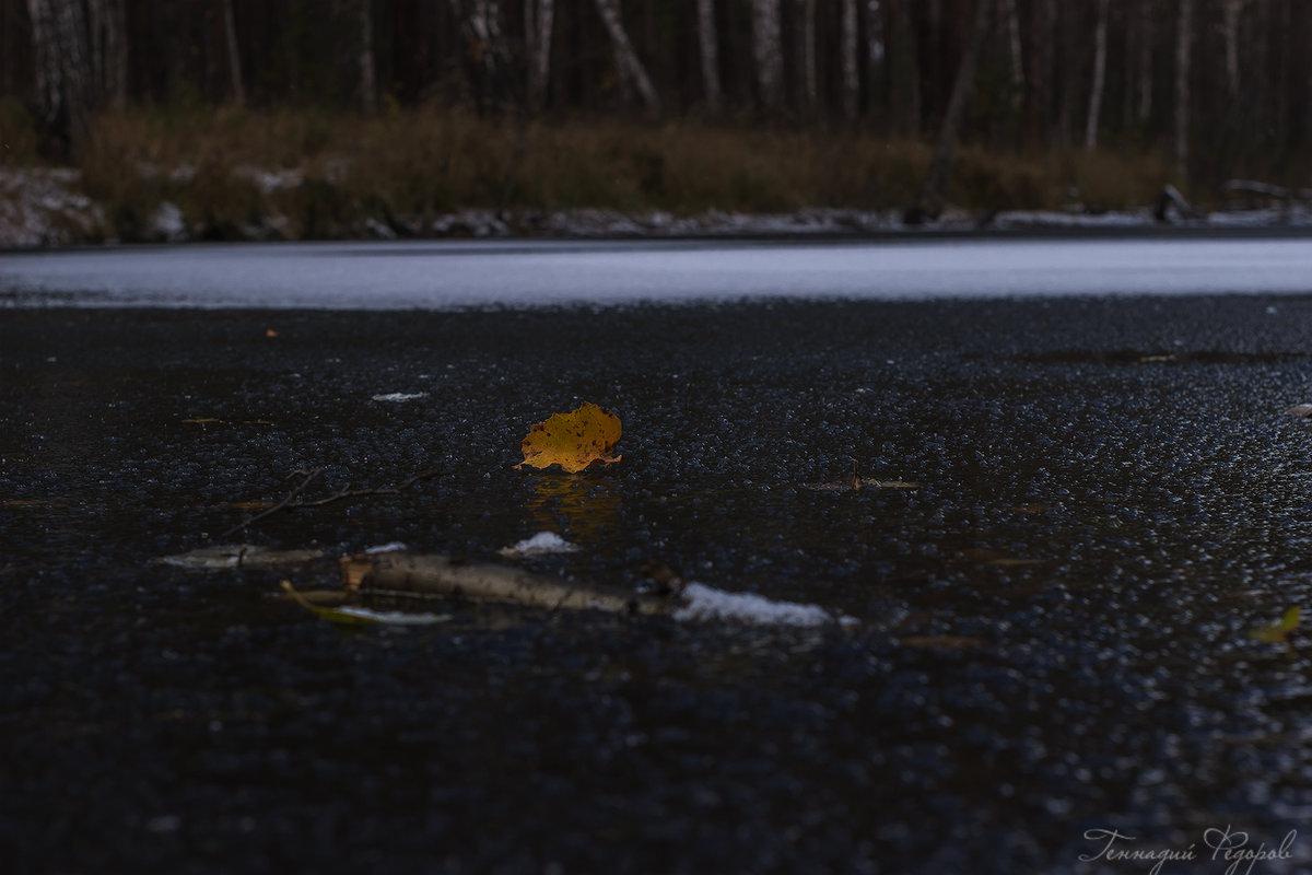 на льду - Геннадий Федоров