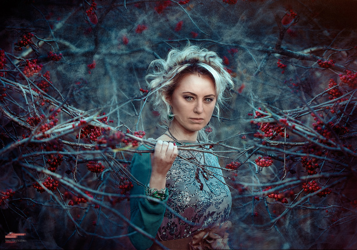 В тёмно синем лесу - Roman Sergeev