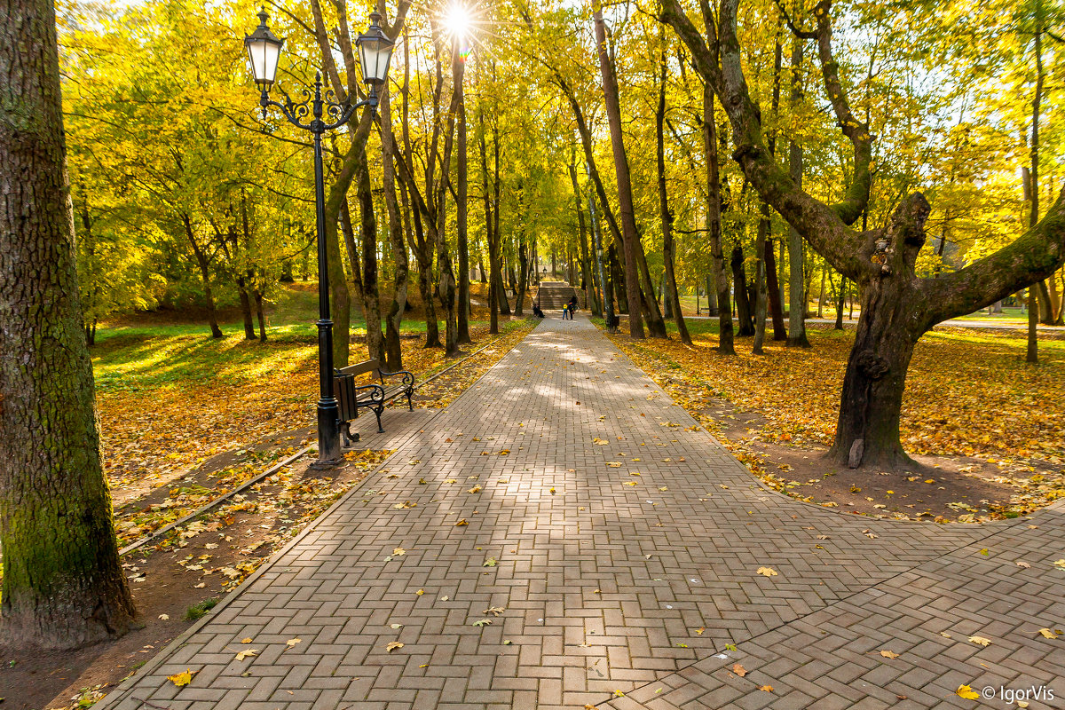 В парке - Игорь Вишняков