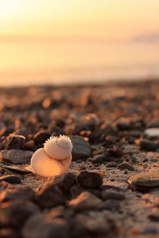 Пляж - Ирина ***