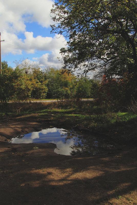 После дождя - Юрий Гайворонский