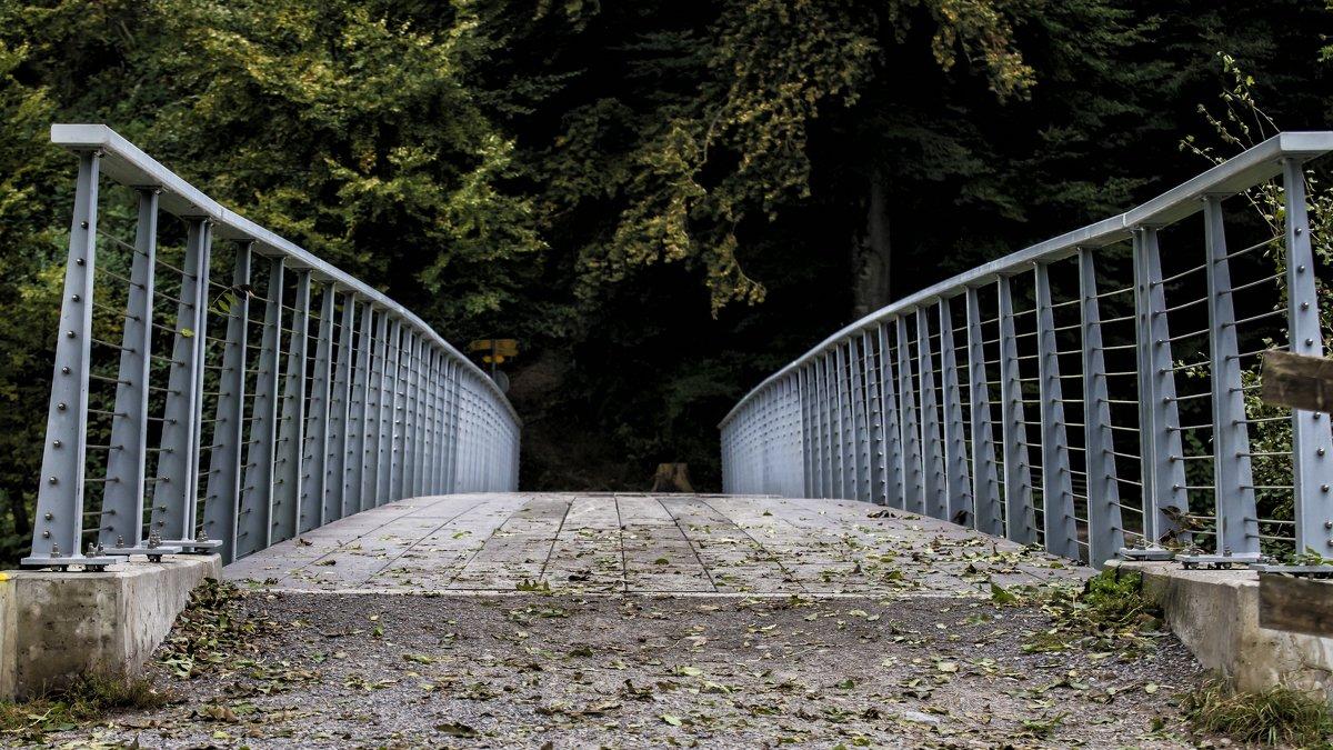 bridge - Dmitry Ozersky