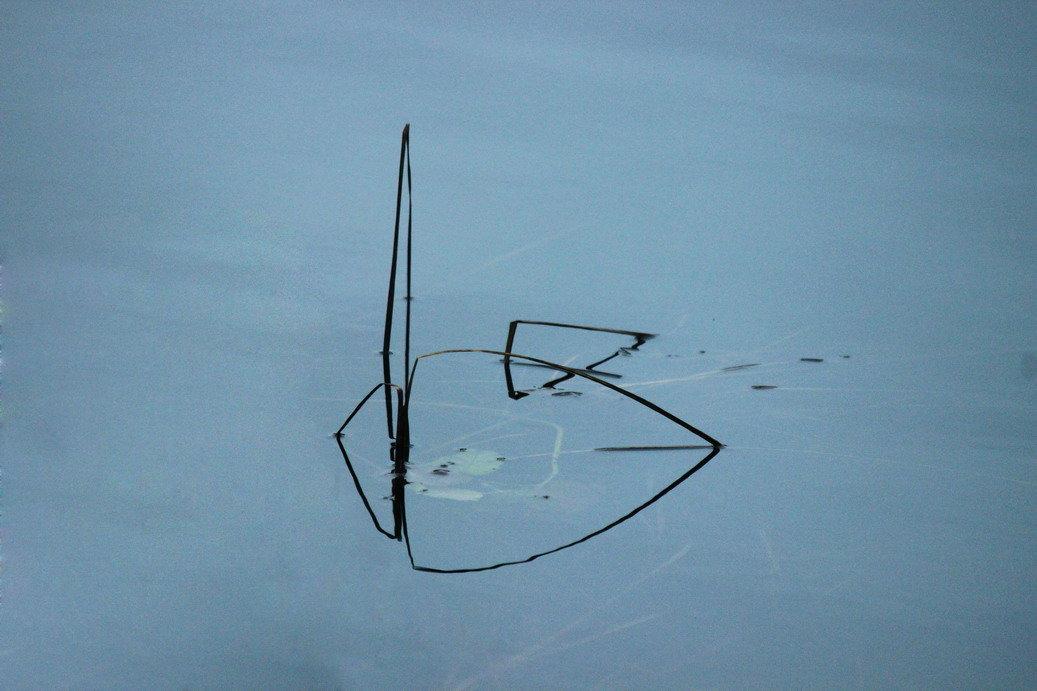 Геометрия на воде - Вера Моисеева