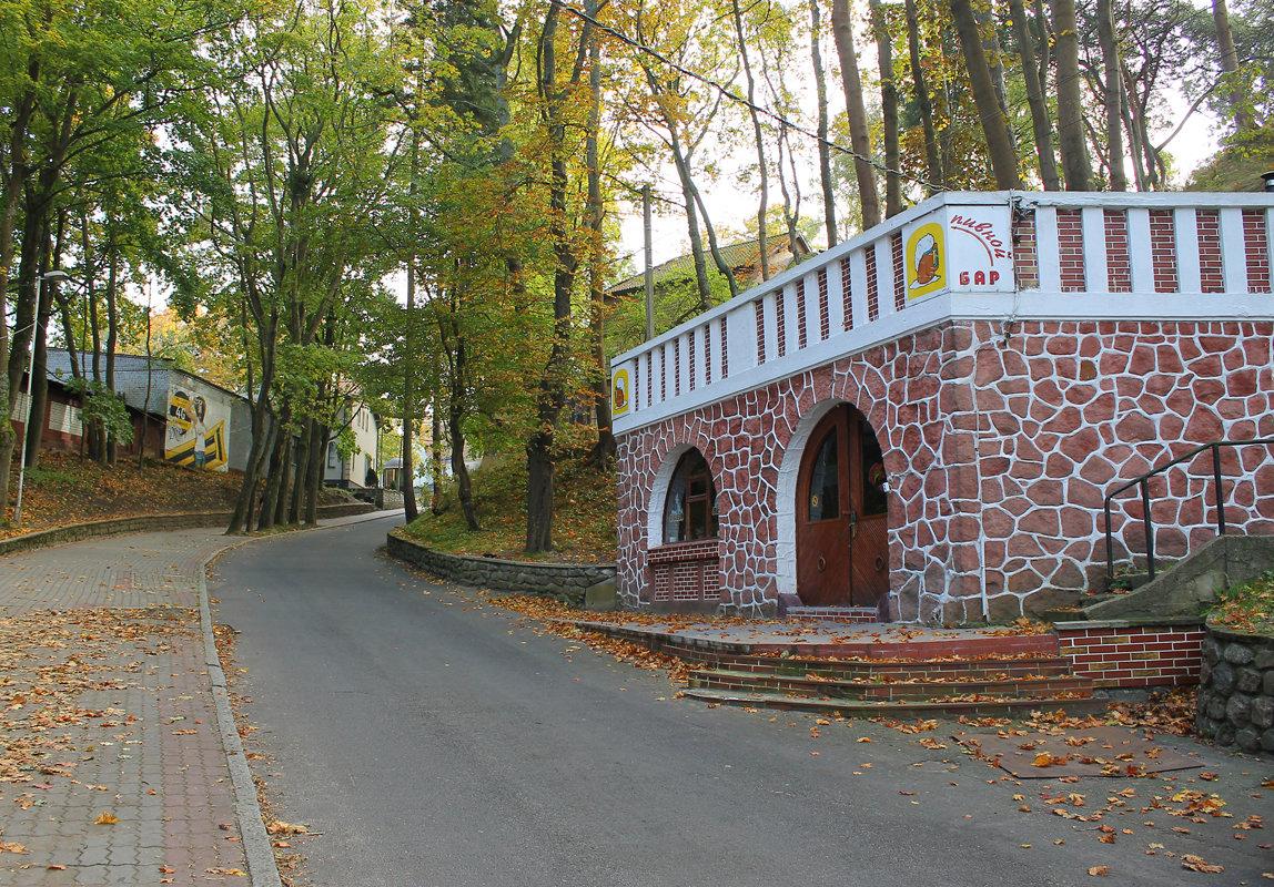 Осень в Светлогорске - Elena N
