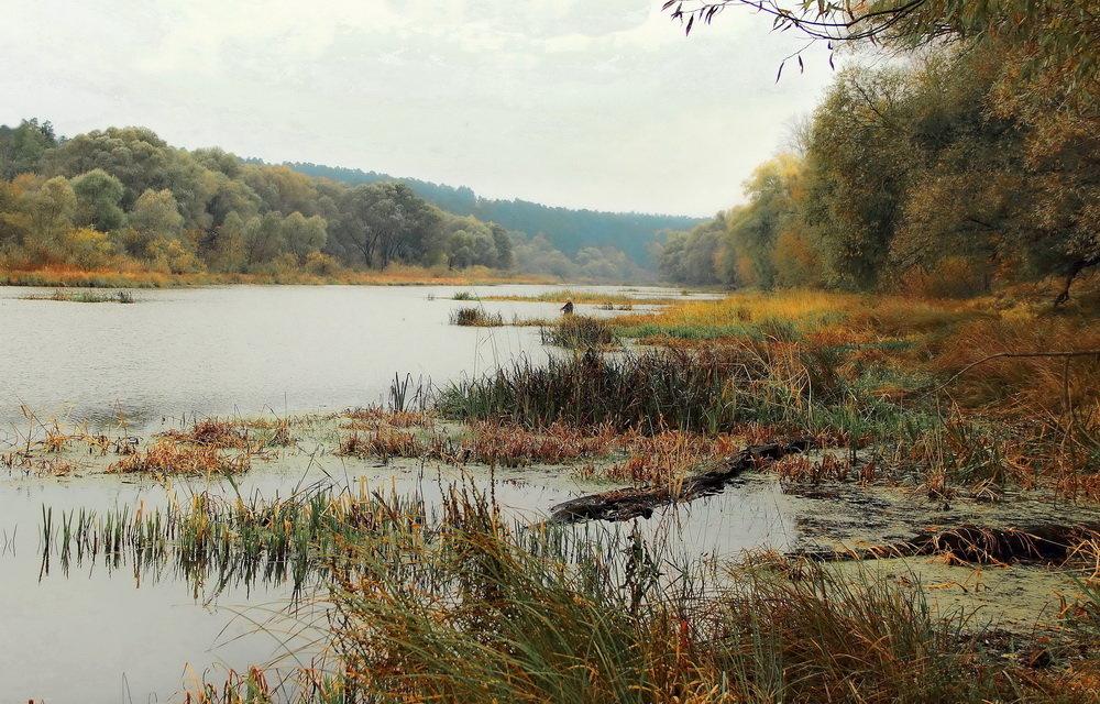 Октябрьский дождь рыбалке не помеха... - Лесо-Вед (Баранов)