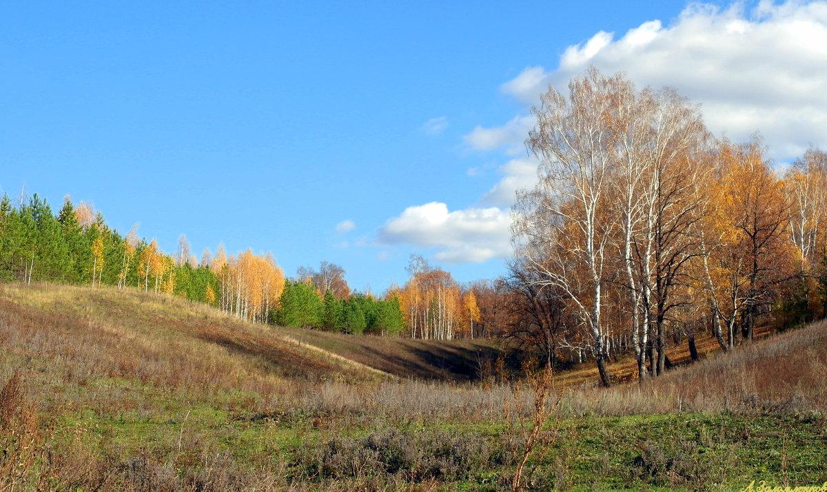 Пейзажи октября - Андрей Заломленков