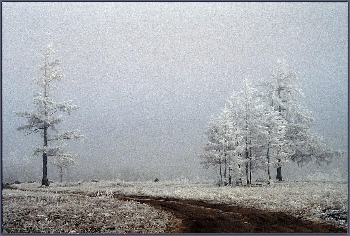 в зимнем наряде - Евгений Кокухин