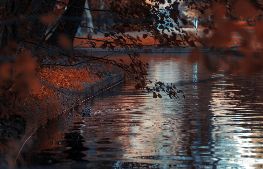 Осенний парк - Михаил Александров