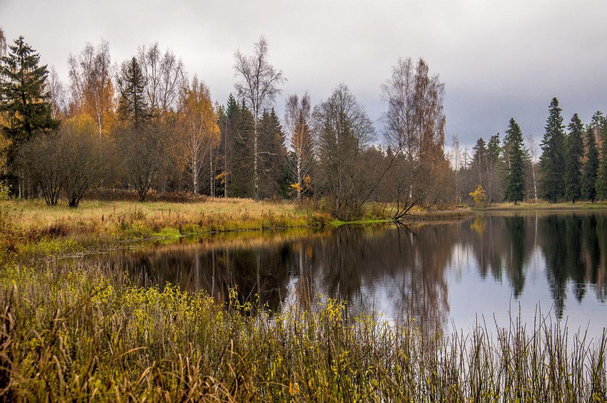 Про осень** - ФотоЛюбка *
