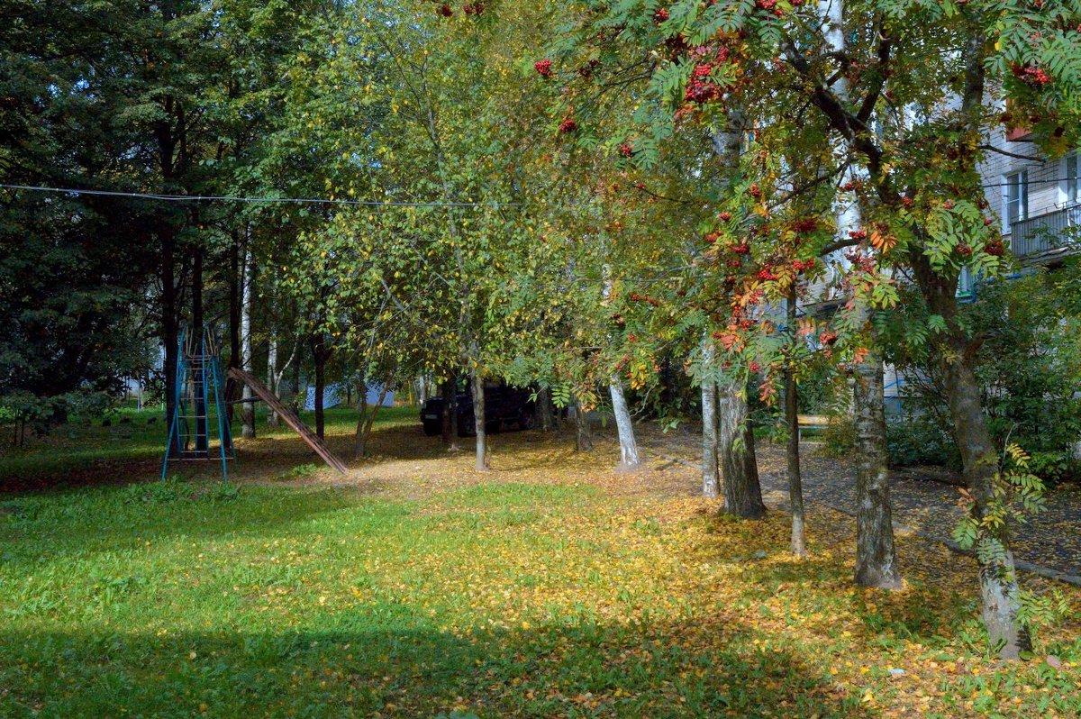 Осень золотая. - Sergey Serebrykov