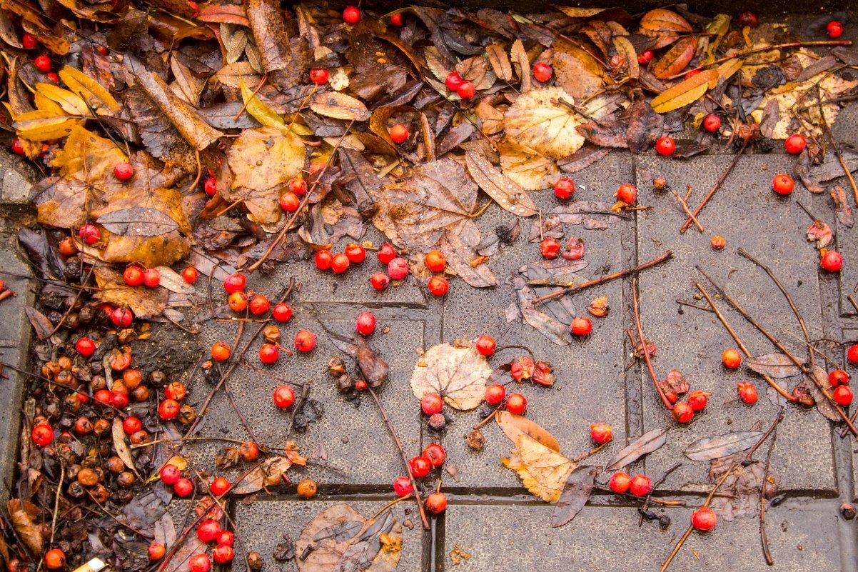 Осень - Ольга Лапшина