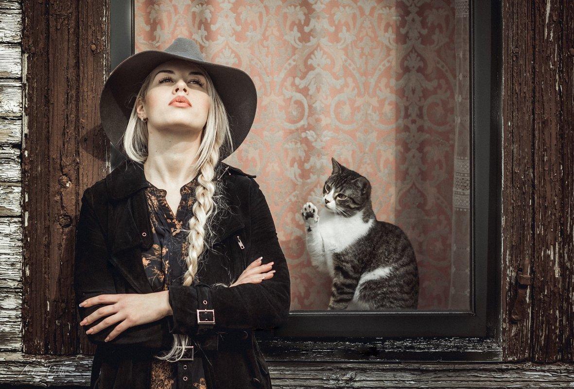 Cat - Artur Politov