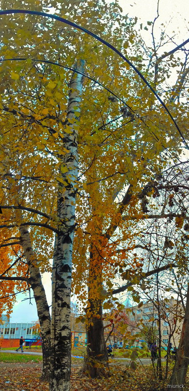 последние деньки октября - Михаил Николаев