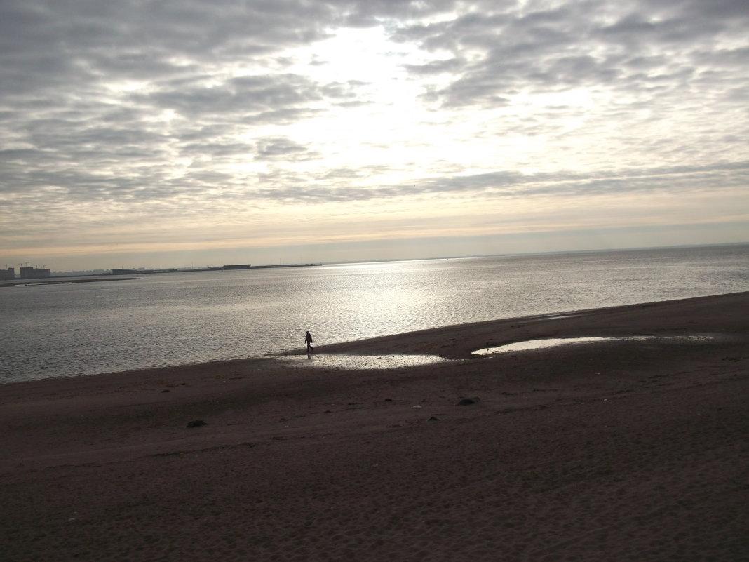 Залив в октябре - Svetlana Lyaxovich