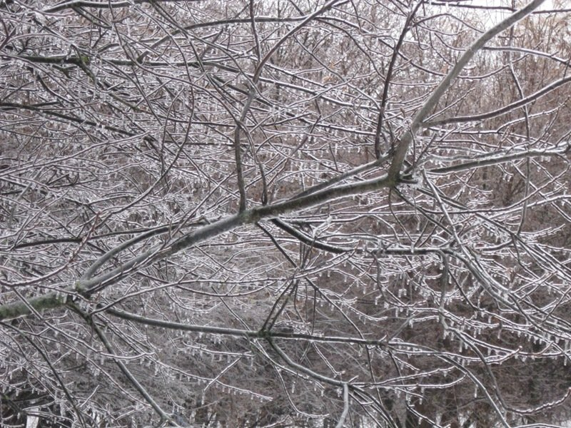 Зимняя красота - Дмитрий Никитин