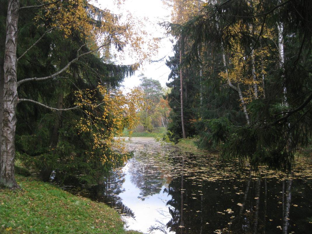 Осень в Павловске. - Лариса (Phinikia) Двойникова