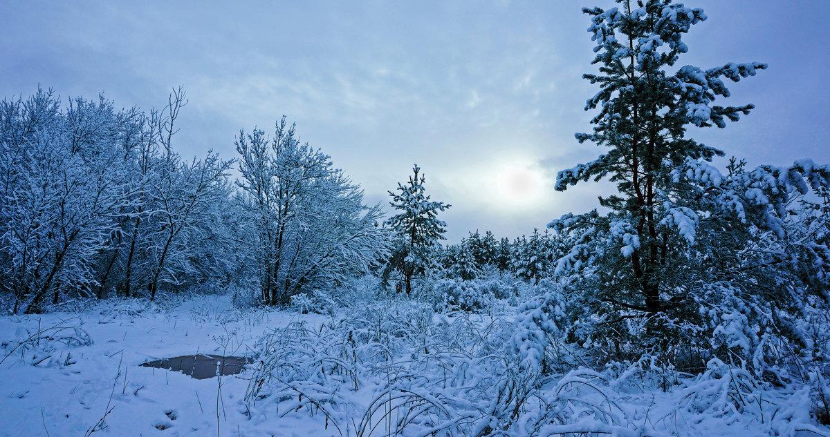 Зимняя тема 22 - Игорь Александрович Оренбург