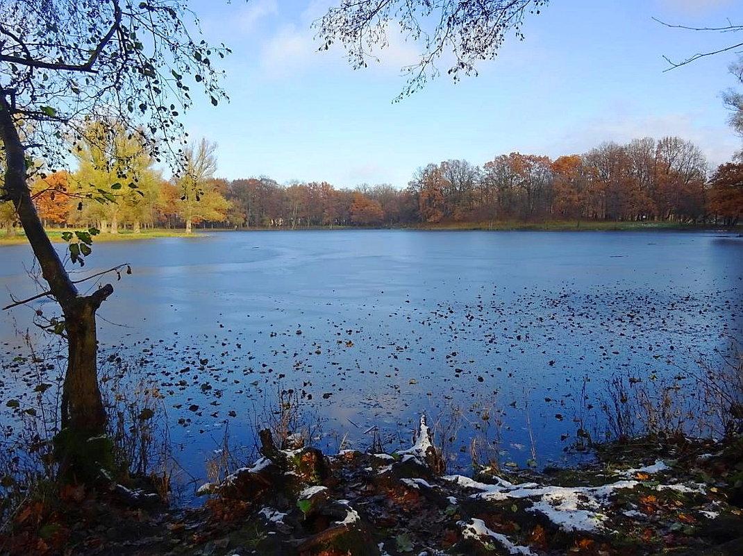 В Ашманн парке в ноябре - Маргарита Батырева