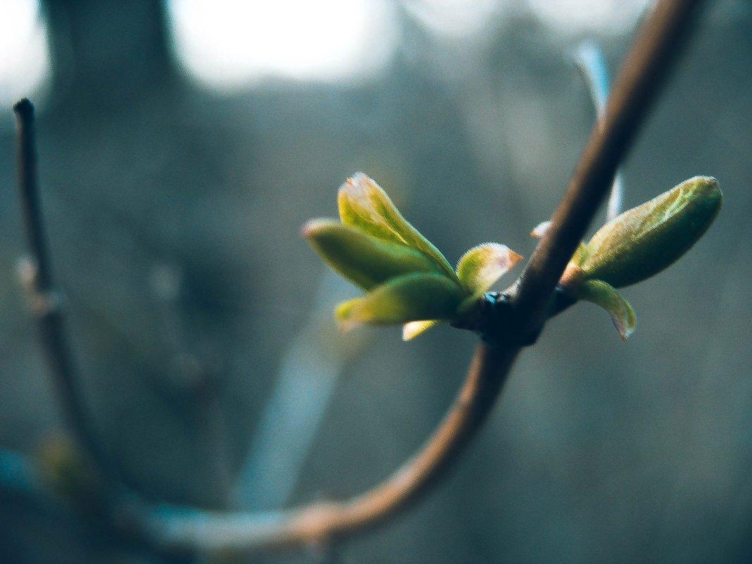 Весна... - Jack Wall