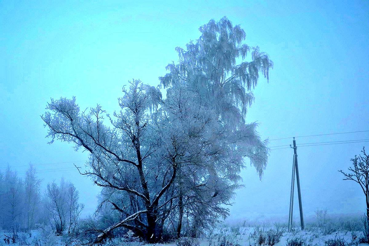 Утренний декабрьский морозный  туман. - Михаил Столяров