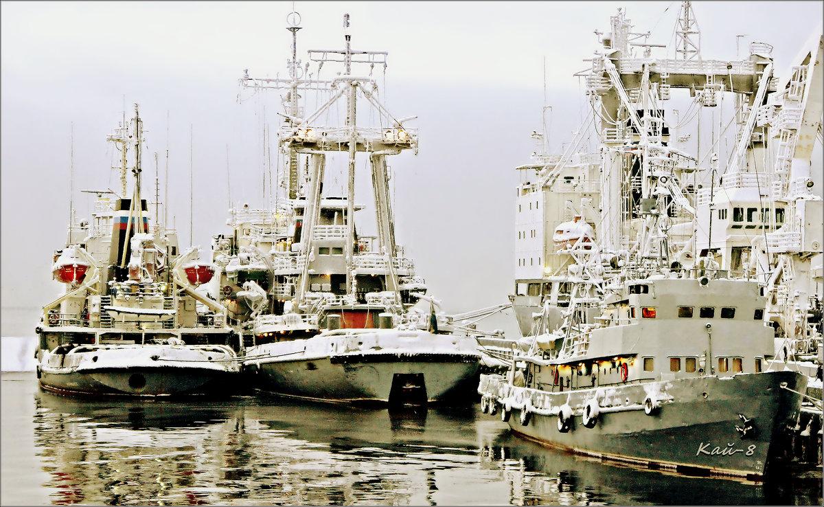 Озябшие корабли - Кай-8 (Ярослав) Забелин
