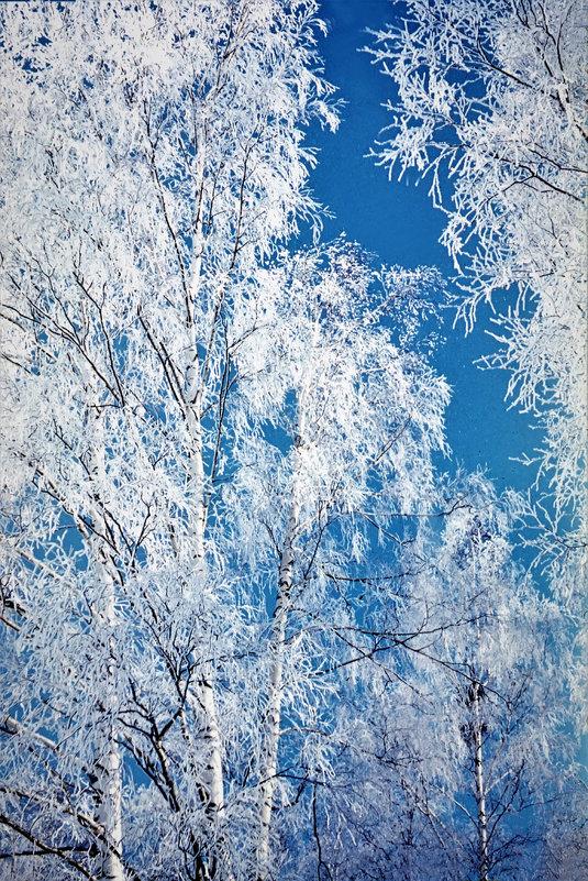 Серебро зимы - Валерий Талашов