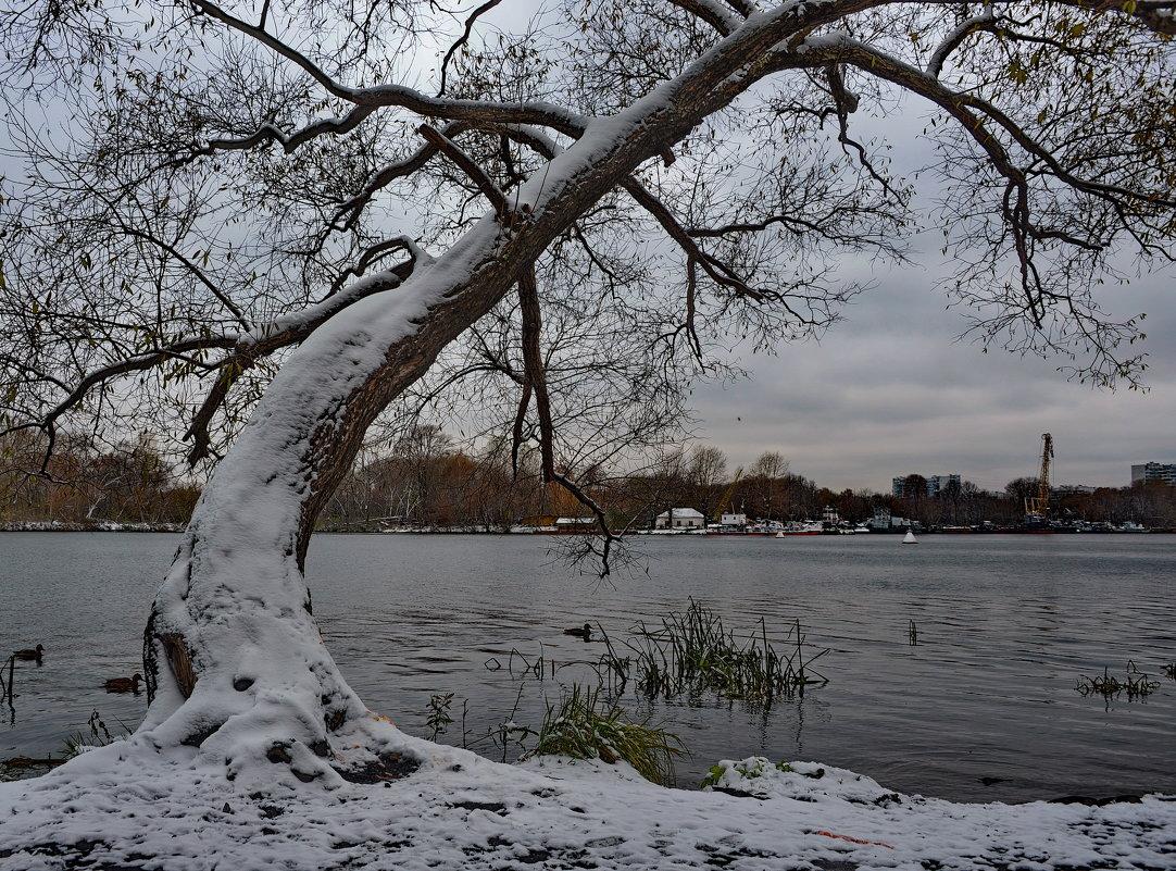 Первый снег - Владимир Брагилевский