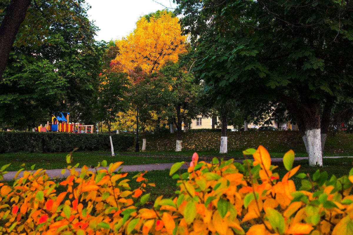 Роскошная осень - delete